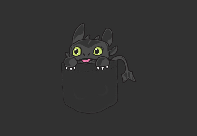 Pocket Toothless  Artwork