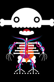 Skully Boy (The Anatomical)