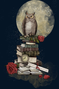 The Bibliophile - (the lover of books)