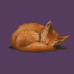 Let Sleeping Foxes Lie