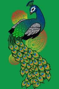Peacock Dreams