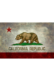 Vintage California Republic State Flag