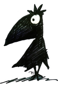Funny Black Crow