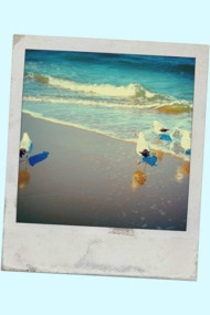 Polaroid of Seagulls