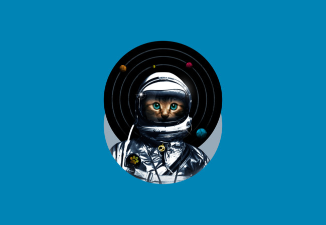 Space Kitten  Artwork