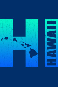 Hawaii - HI (vintage distressed look)